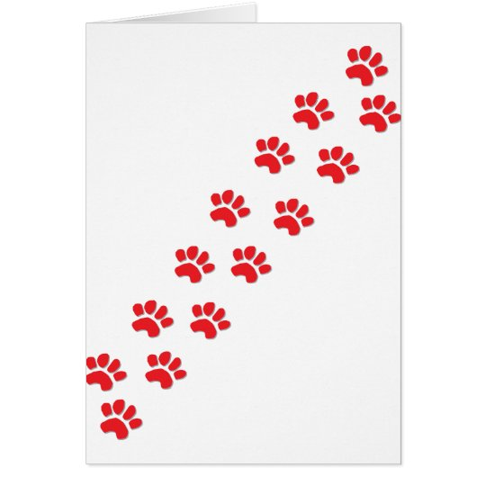 Kitty Cat Paws Card