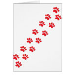 Kitty Cat Paws Greeting Cards