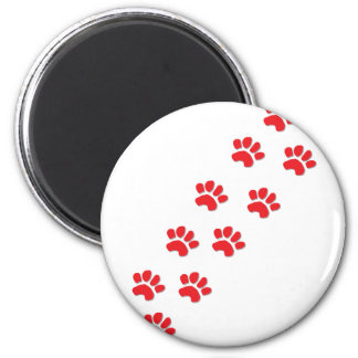 Kitty Cat Paws Refrigerator Magnet