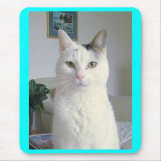 Kitty Cat Portrait Mouse Pad