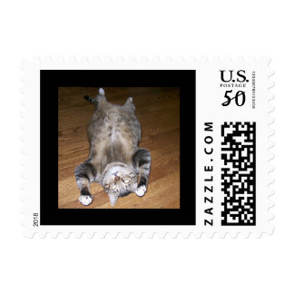 Kitty Cat Postage