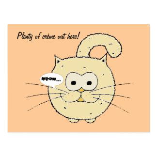 Kitty-cat Postcard