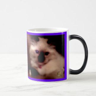 Kitty Cat Products Magic Mug