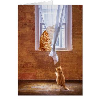 Kitty cat role  model card
