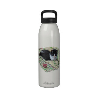 Kitty Cat Sleeping on Afghan Color Pencil Art Water Bottle