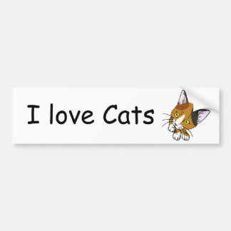 Kitty-cat , Tortoiseshell  (三毛猫) Bumper Sticker