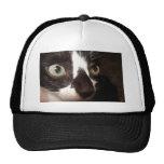 Kitty Cat Trucker Hats