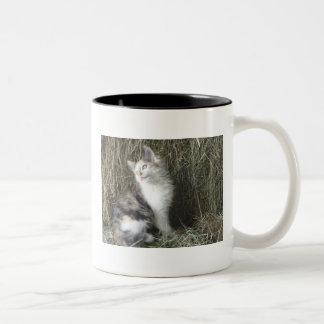 Kitty Cat Two-Tone Coffee Mug
