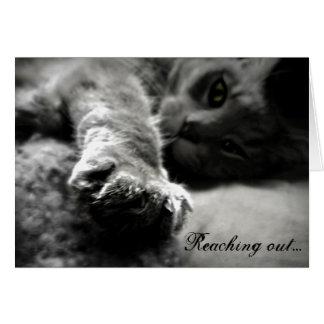 Kitty Cat Valentine's Day Card