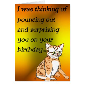 Kitty Cat Wants to Give a Surprise Card