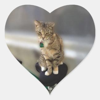 Kitty Cat Wants to Go Biking Heart Sticker