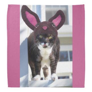 Kitty Cat Wearing Bunny Ears Bandana