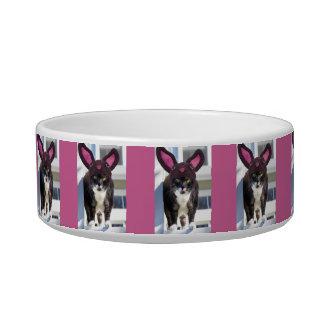 Kitty Cat Wearing Bunny Ears Bowl