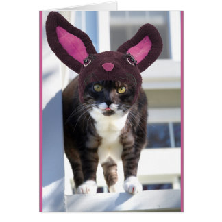 Kitty Cat Wearing Bunny Ears Card