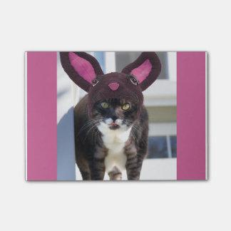 Kitty Cat Wearing Bunny Ears Post-it Notes