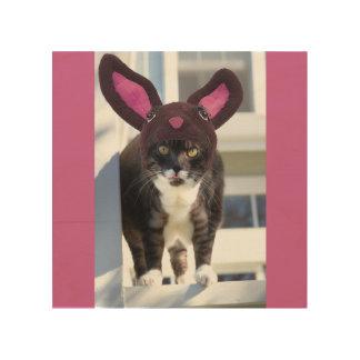 Kitty Cat Wearing Bunny Ears Wood Wall Art