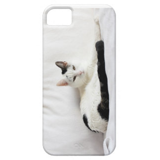 Kitty Cat, White and Black Cat Relaxing iPhone SE/5/5s Case