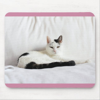 Kitty Cat, White and Black Cat Relaxing Mouse Pad
