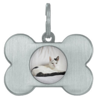 Kitty Cat, White and Black Cat Relaxing Pet ID Tag