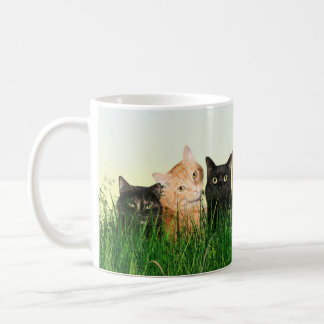 Kitty cats in the grass coffee mug