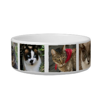 Kitty Cats Pet Water Bowls