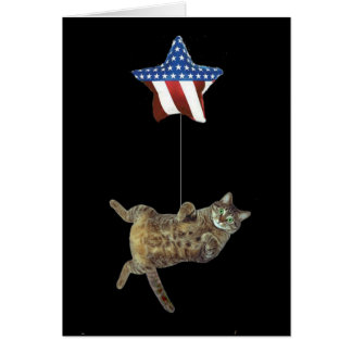 Kitty celebrates 4th of July Greeting Card