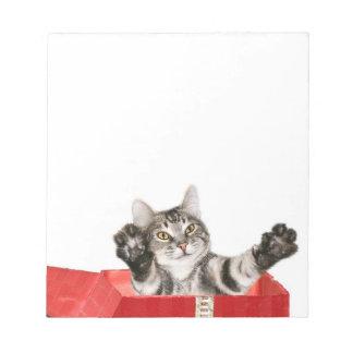 Kitty Christmas hug Notepad
