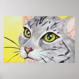 Kitty Closeup Poster
