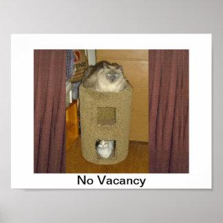 Kitty Condo, No Vacansy Poster