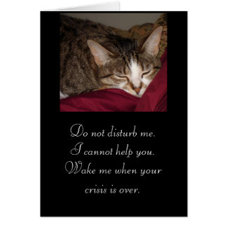 kitty           Do not disturb me.... Stationery Note Card