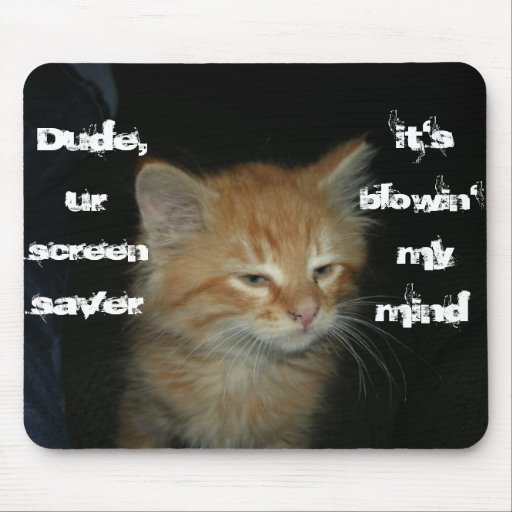 "Kitty ""Dude Screen Saver Blowin' My Mind"" Mousepad"
