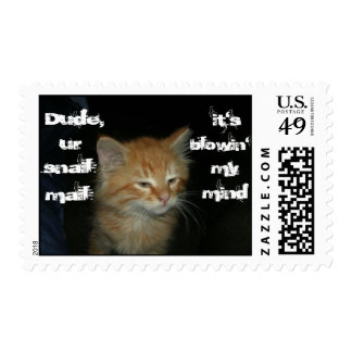 """Kitty """"Dude Ur Snail Mail Blowin' My Mind"""" Stamps"""