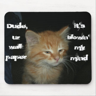 """Kitty """"Dude Wall Paper Blowin' My Mind"""" Mousepad"""