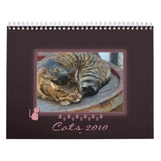 Kitty Frame Photo Calendar