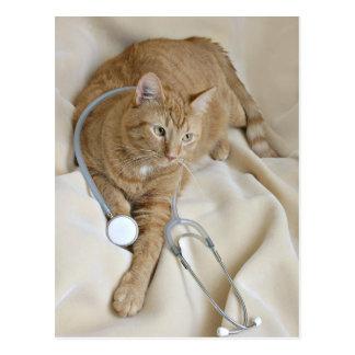 Kitty get well postcard