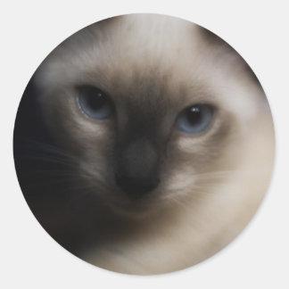 Kitty Glamour Sticker