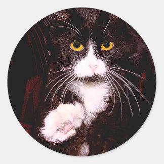 Kitty Greetings Classic Round Sticker