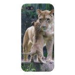 Kitty Hugging Lion iPhone 5 Cover