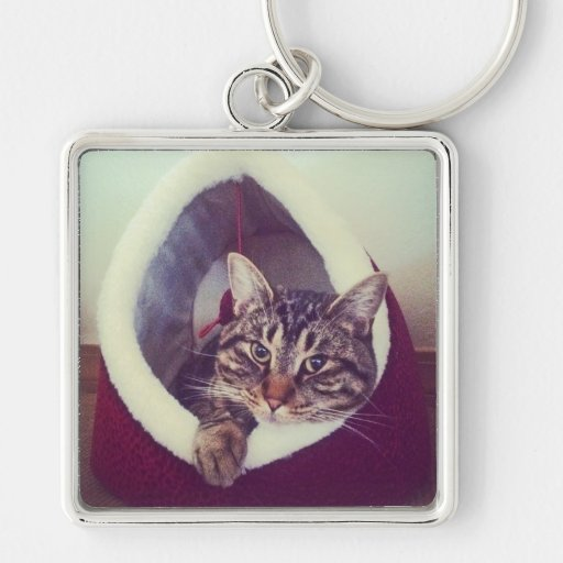 Kitty Hut Close Up Photo Key Ring Silver-Colored Square Keychain