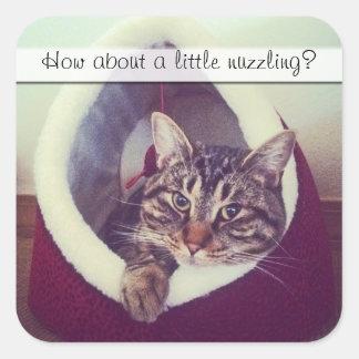 Kitty Hut Close Up Photo Square Sticker