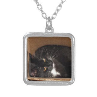 Kitty in a Box - Photograph Custom Jewelry