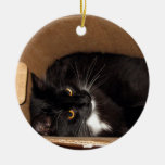 Kitty in a Box - Photograph Double-Sided Ceramic Round Christmas Ornament