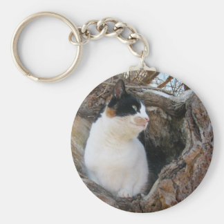 Kitty in a Tree Hollow Keychain