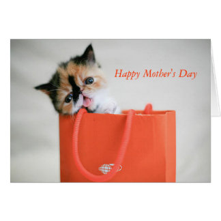 Kitty In Shopping Bag Mother's Day Card