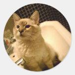 kitty in sink sticker
