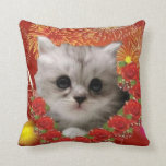 Kitty in the fireworks pillows