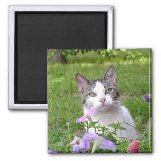 Kitty in the Flowers Magnet