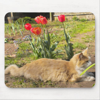 Kitty in the Garden Mousepad