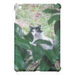 Kitty In The Leaves Case For The iPad Mini