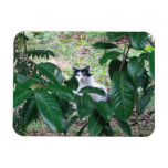 Kitty In The Leaves Flexible Magnet